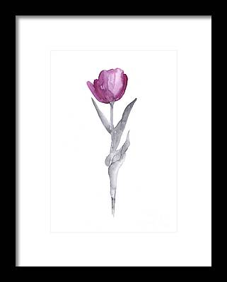 Tulips Watercolor Framed Prints