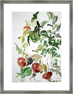 Abstract Vegetables Framed Print