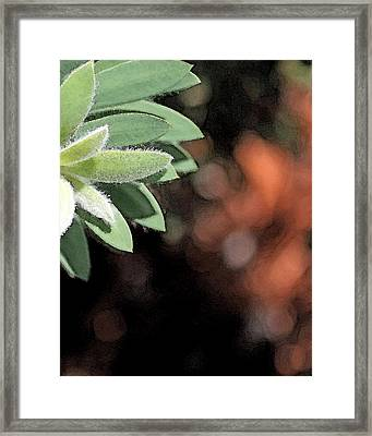 Framed Print featuring the photograph Abstract Watercolor by Judy Vincent