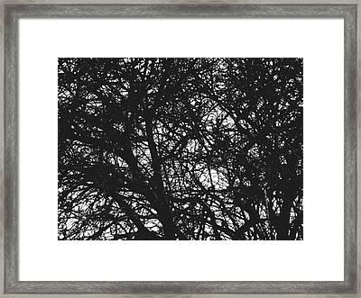 Framed Print featuring the mixed media Abstract X by Chriss Pagani