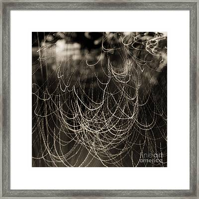 Abstractions 002 Framed Print