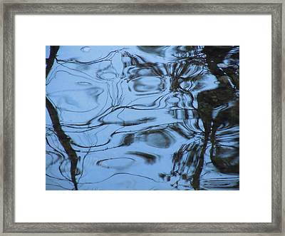 Abstracts In Nature Part 3 Framed Print