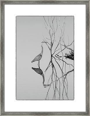 Framed Print featuring the photograph Abstracts On The Lake by Carolyn Dalessandro