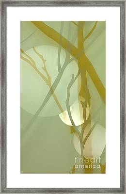 Illusions 1 Framed Print