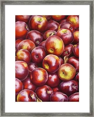 Abundance Framed Print by Ariel Freeman