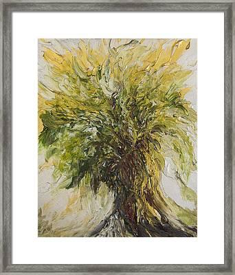 Abundance Tree Framed Print