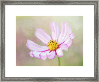 Abundance. Framed Print