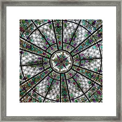 Abundancia Framed Print
