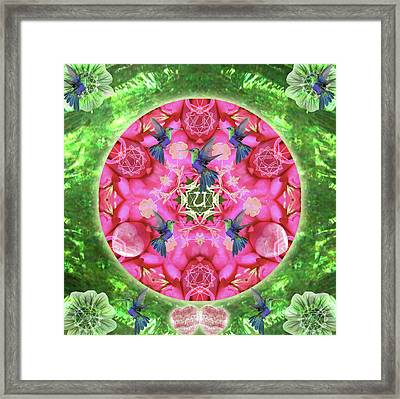 Abundant Flight Framed Print