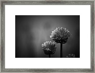 Abundantia Framed Print