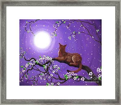Abyssinian In Amethyst Moonlight Framed Print