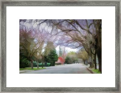 Acacia Street 1 Framed Print
