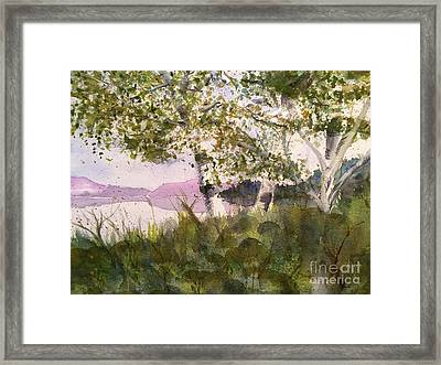 Acadia Morning Framed Print by Maura Satchell