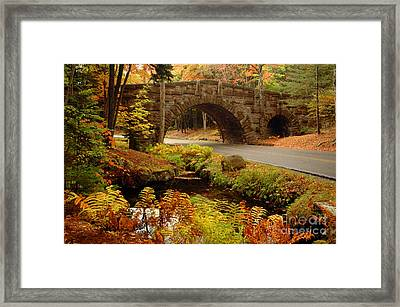 Framed Print featuring the photograph Acadia Stone Bridge by Alana Ranney