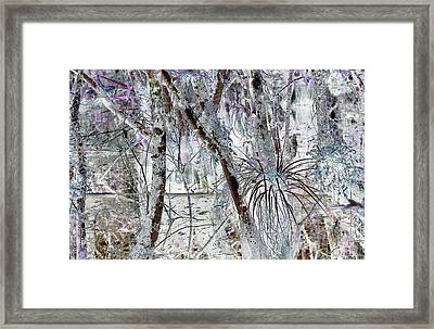 Accentuating The Negative Framed Print