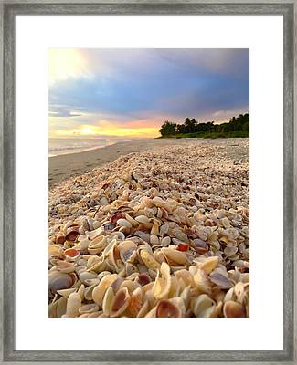 Access 7 Framed Print