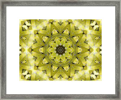 Accolade Framed Print