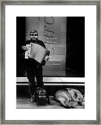 Accordian Player Framed Print by Todd Fox