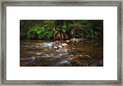 Framed Print featuring the photograph Acheron River by Tim Nichols