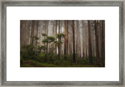 Framed Print featuring the photograph Acheron Way by Tim Nichols
