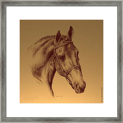 Achilles Framed Print by Laurie Musser