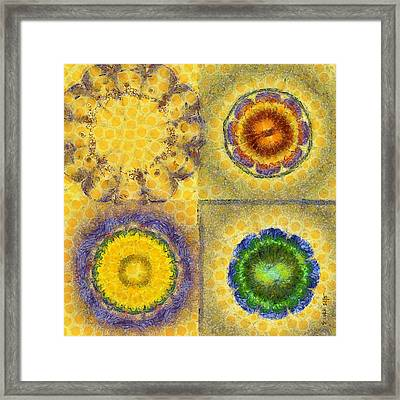 Achy Make-up Flower  Id 16165-001536-13430 Framed Print by S Lurk