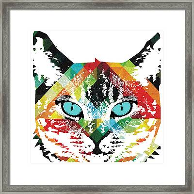Acid Cat Dream By Robert R Framed Print by Robert R Splashy Art Abstract Paintings