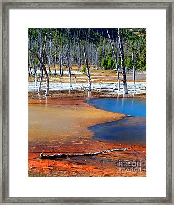 Acid Soup Yellowstone Framed Print by Diane E Berry