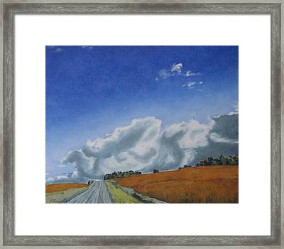 Across A Golden Soya Field Framed Print