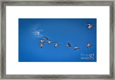 Across An Autumn Sky Framed Print by Janice Rae Pariza