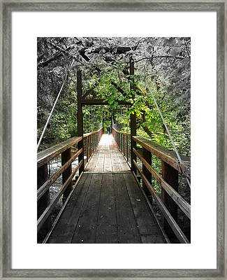 Across The Creek Framed Print by Carol Grimes