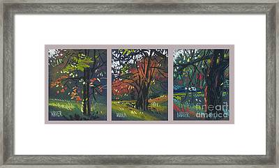 Across The Creek Triplet Framed Print by Donald Maier