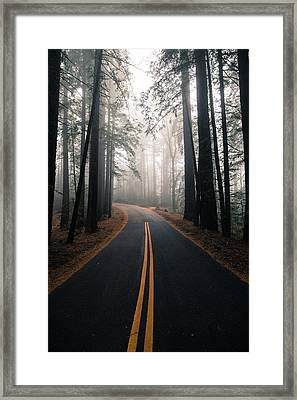 Across The Forest Framed Print