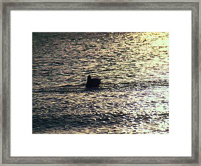 Across The Patches Of Sepia Framed Print