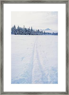 Across The Winter Landscape Framed Print by Ronnie Glover