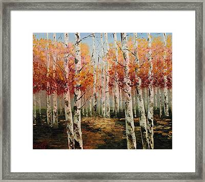 Acrylic Msc 096 Framed Print