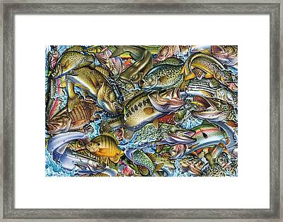 Action Fish Collage Framed Print by Jon Q Wright JQ Licensing