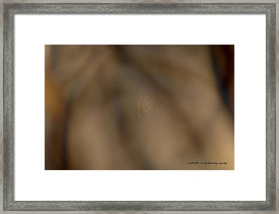 Actions Speak Louder Than Words Framed Print by Vicki Ferrari