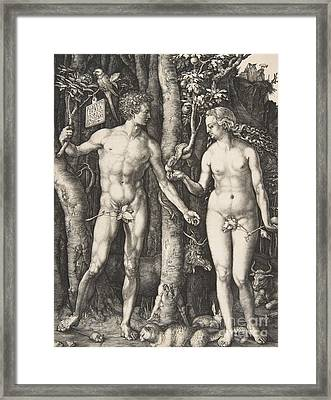 Adam And Eve, 1504  Framed Print by Albrecht Durer
