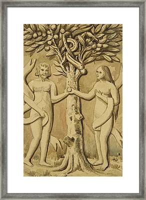 Adam And Eve Framed Print by Joesph Manning