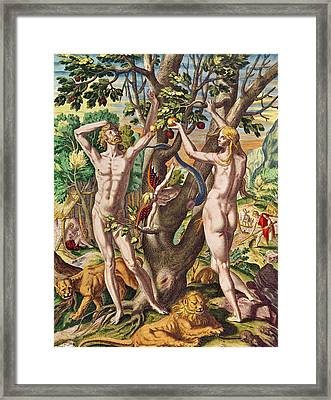 Adam And Eve Framed Print by Theodore de Bry