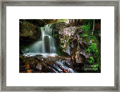 Framed Print featuring the photograph Adams Canyon Oasis by Spencer Baugh