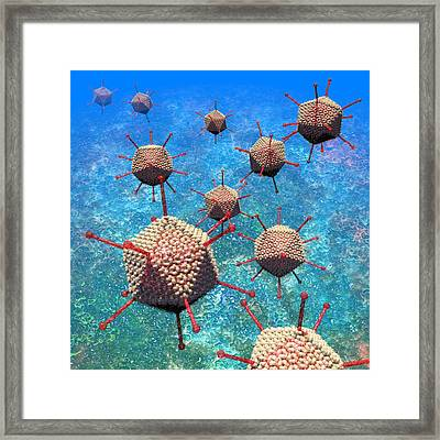 Adenovirus Particles 3 Framed Print