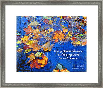 Framed Print featuring the photograph Adironack Laughing Water Charity by Diane E Berry
