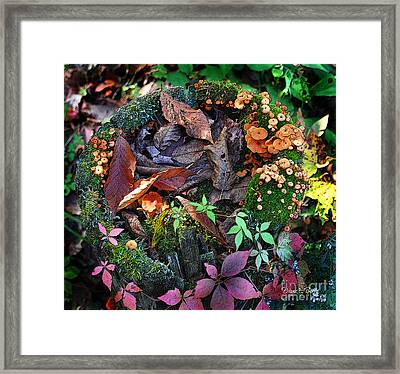Adirondack Autumn Bouquet Framed Print by Diane E Berry