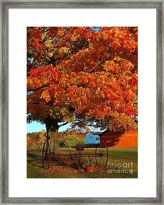 Framed Print featuring the photograph Adirondack Autumn Color by Diane E Berry