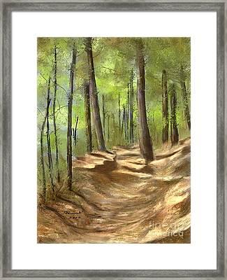 Adirondack Hiking Trails Framed Print