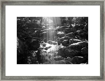 Adirondack Light Framed Print