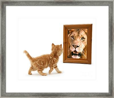 Admiring The Lion Within Framed Print
