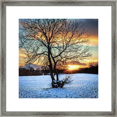 Admiring The Sunet Framed Print